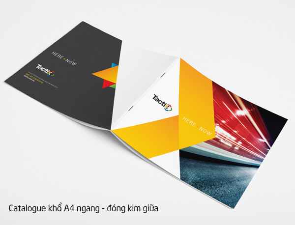 in catalogue đóng kim giữa